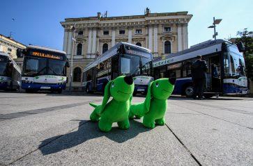 Elektryczne autobusy na linii 154