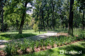 Zabytkowy park Jerzmanowskich po rewitalizacji