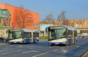 Od lutego więcej kursów tramwajów i autobusów