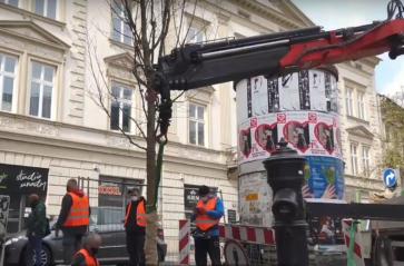 Nowe drzewo zasadzone przy ul. Stradomskiej