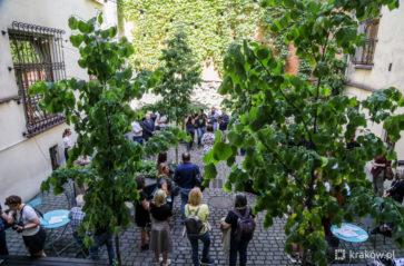 Zielony dziedziniec UMK dla wszystkich. Ogród społeczny już otwarty