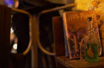 Świat magii w Dziórawym Kotle